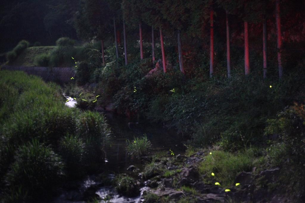 天然水の豊富な神石高原町