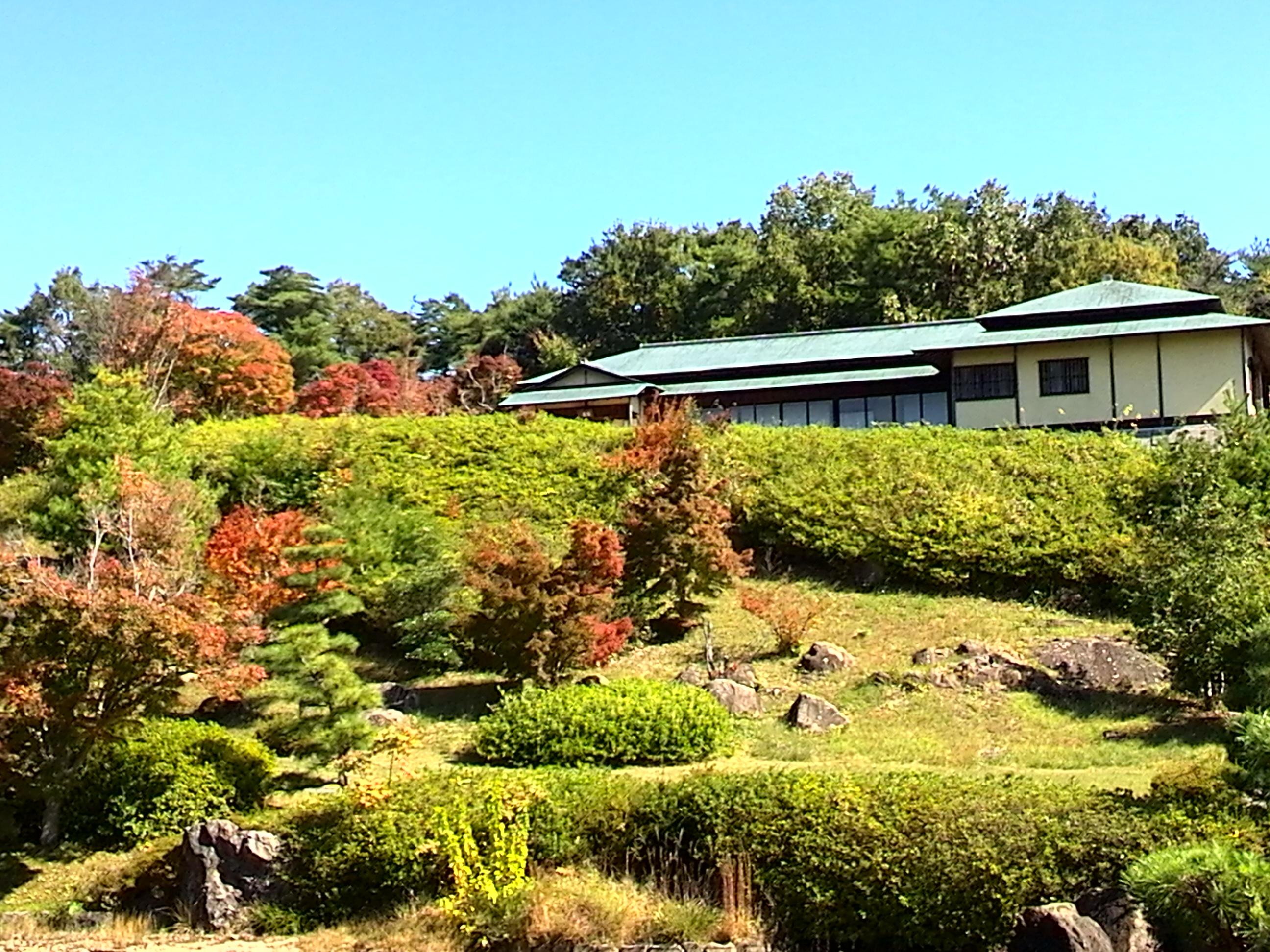 茶室「双忘亭」から見える山並みは美しい景色です