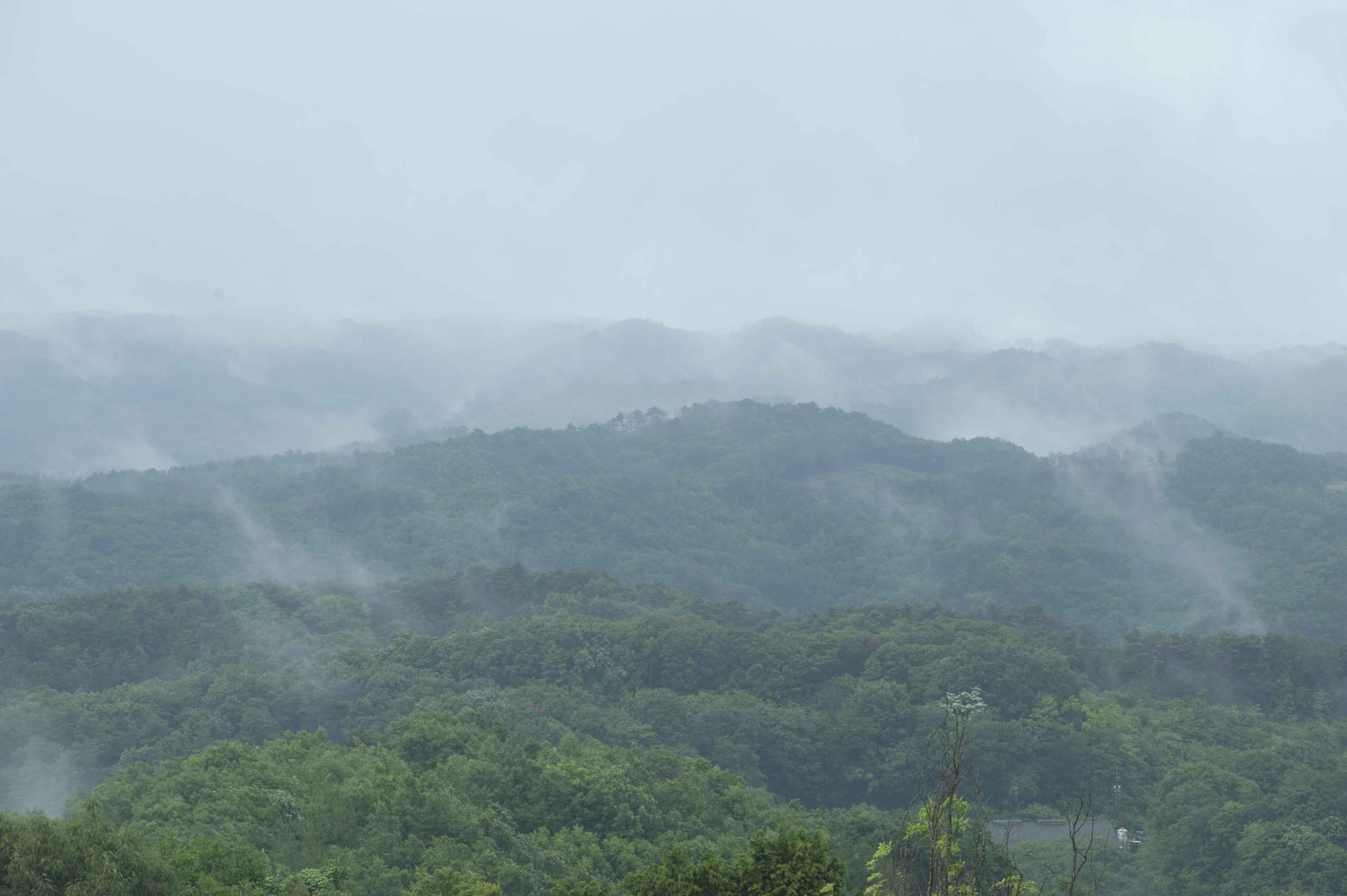 標高600メートルの高原にある森のリゾート