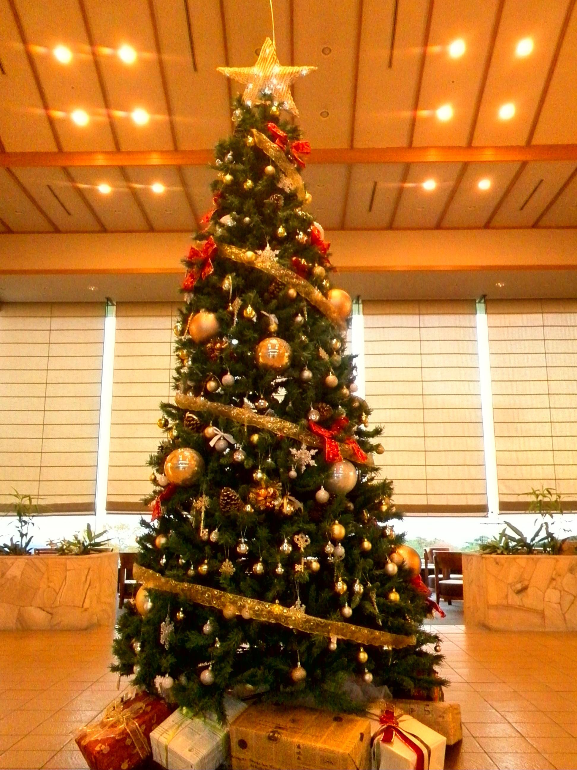 高原リゾートで過ごすたいせつなクリスマス休暇
