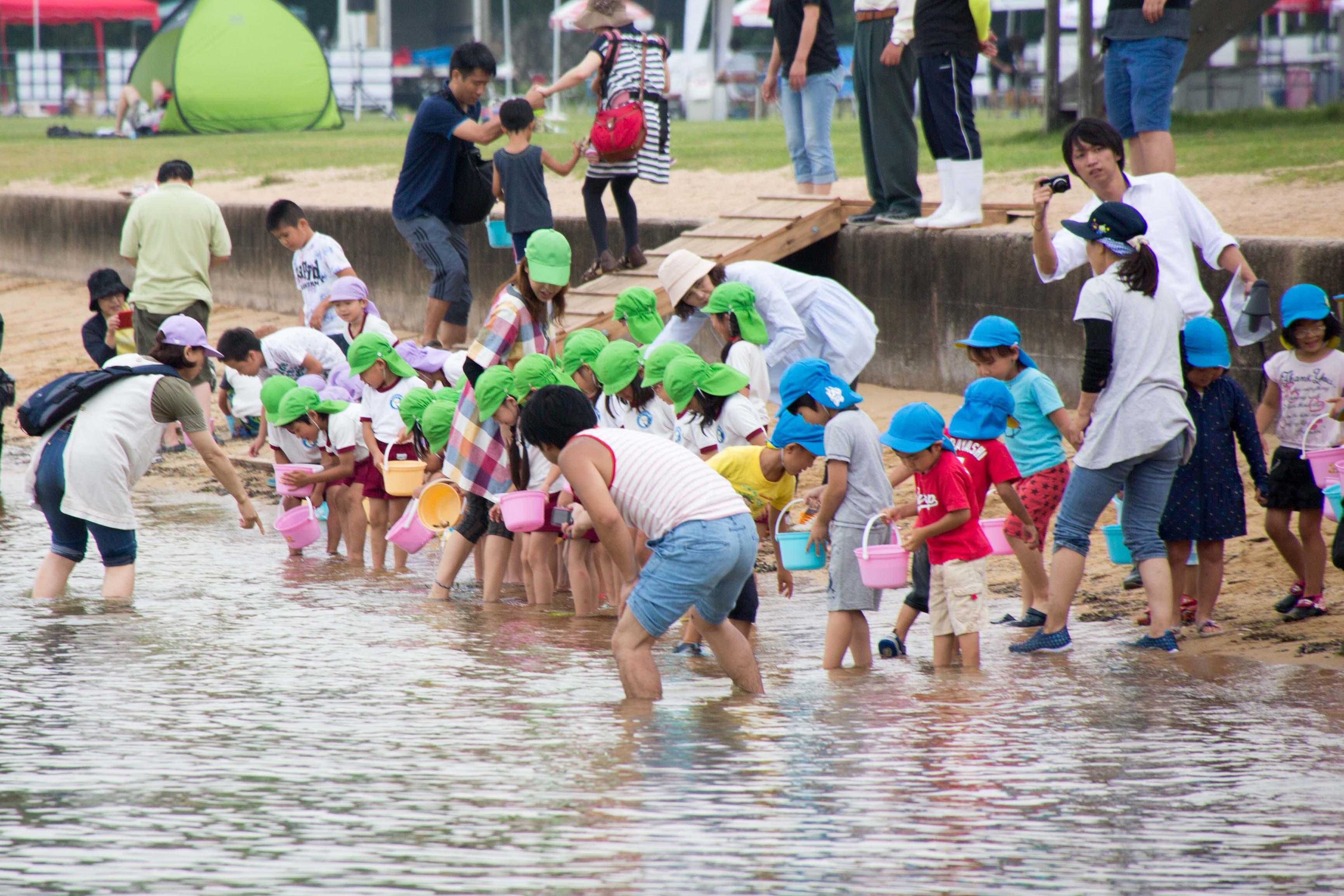 約3000匹の稚魚を瀬戸内海に放流