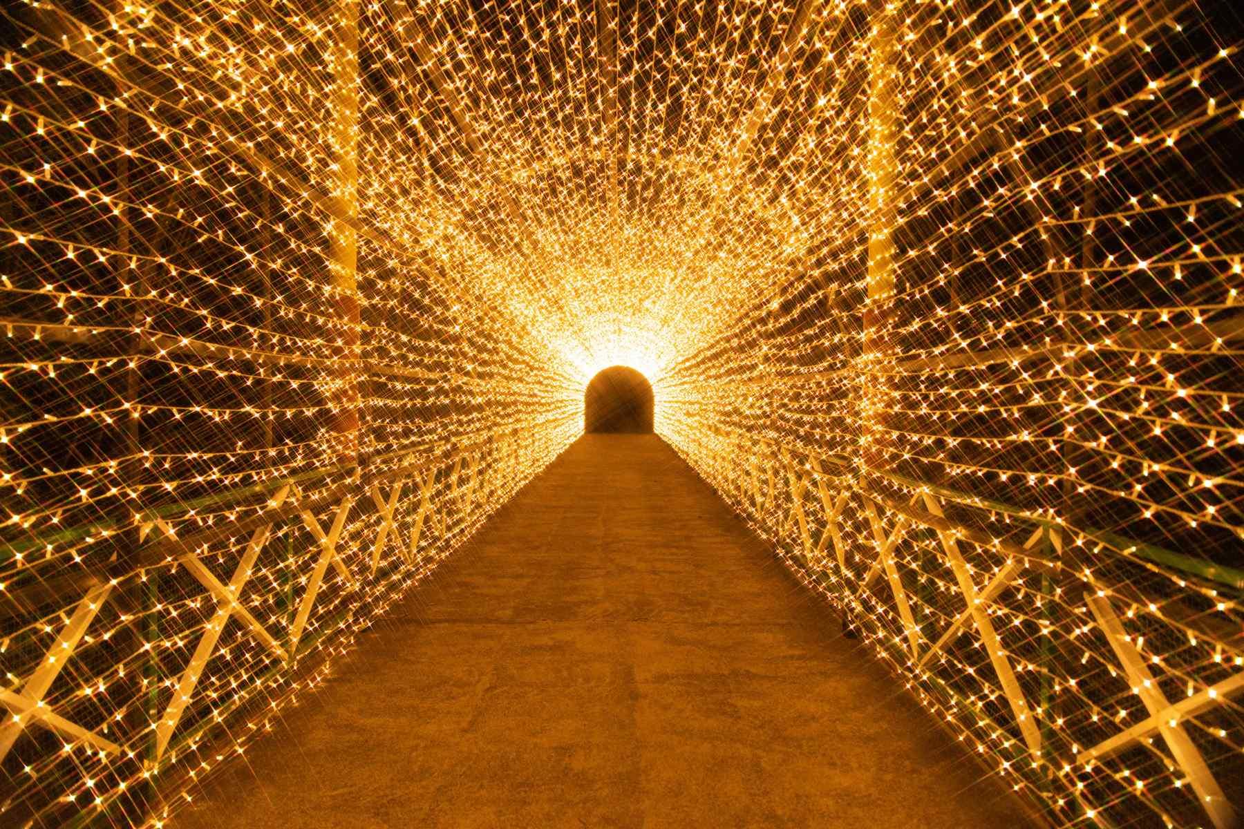 光と遊ぶ、夜の遊園地へようこそ。「キラメキノセカイ」
