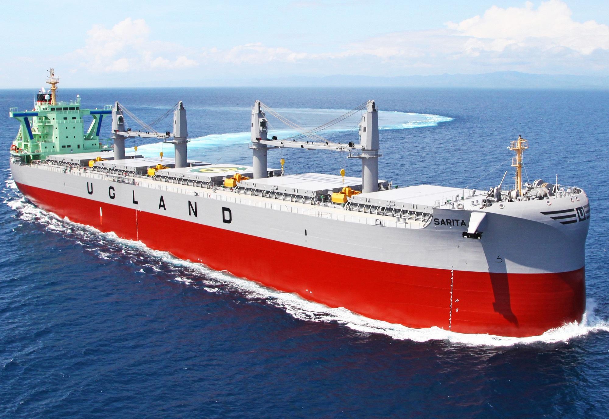 """常石造船のロングセラー""""TESS""""シリーズが累計500隻竣工を達成! ~30年にわたり進化を続けるエコシップ~"""