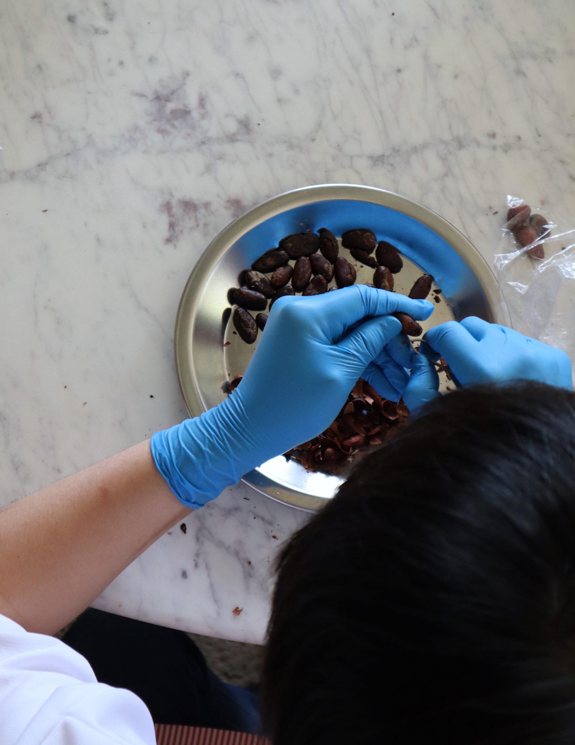 LOG(ログ)と尾道さつき作業所がカカオ豆からの手作りチョコレートワークショップ(2月6日)参加者を募集 テーマはバレンタインギフト